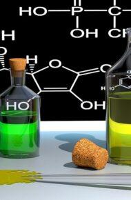 Attivazione nuovo indirizzo: Chimica – Biotecnologie Ambientali as 2021/2022